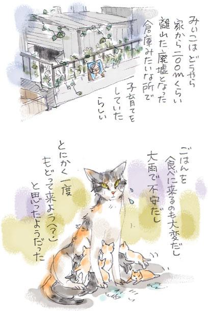 みぃこのこと(30)