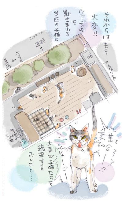 みぃこのこと(31)
