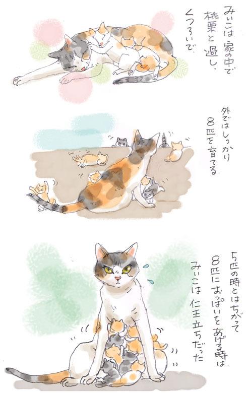 みぃこのこと(32)