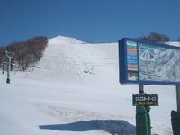 ニセコ春スキー!