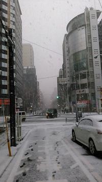 さて新宿でも雪が降ったわけだが