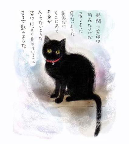 昼間の黒猫