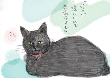 涼しい黒猫