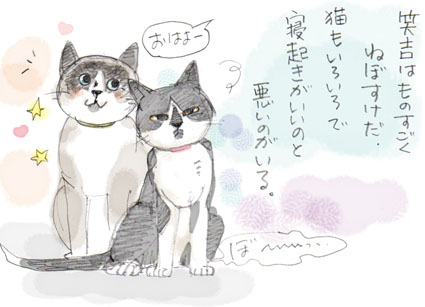 ねぼすけ猫