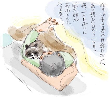 猫の暦「月命日」