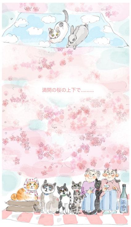 満開の桜の...