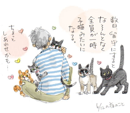 みんな子猫