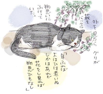 猫には萩がよく似合う