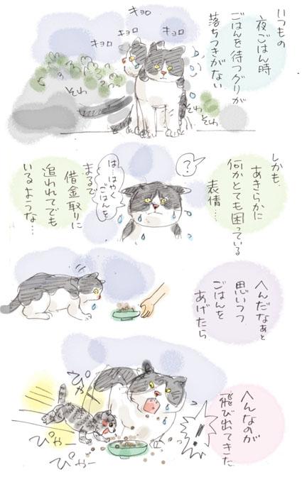 が〜〜〜〜〜〜〜ん!!!!!
