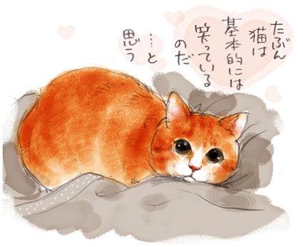 猫というもの.......