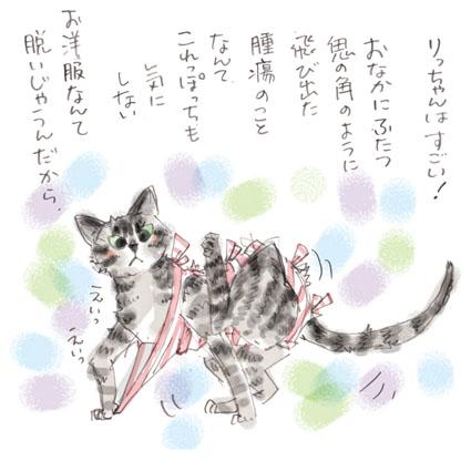 ひゃくてんまんてん猫