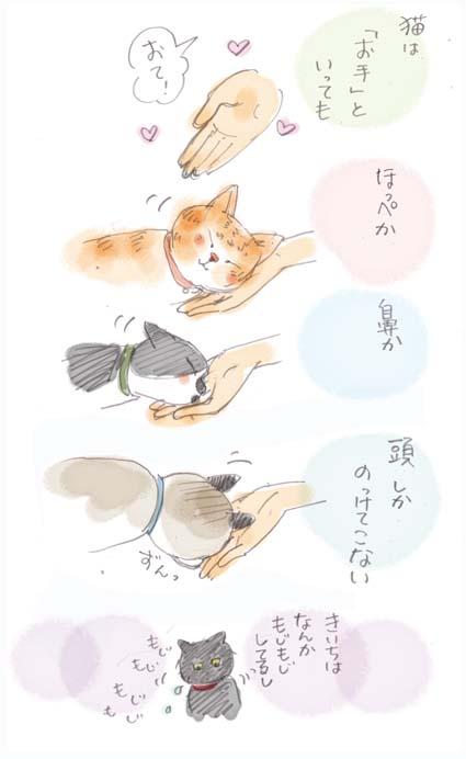 猫の「お手」