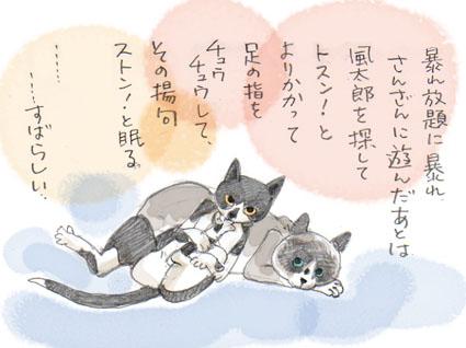 猫の兵法-其の弐「絶対的マイペース」