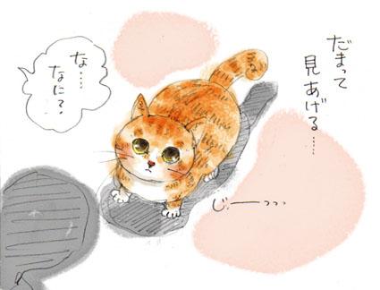 猫の兵法-其の参「見上げる」