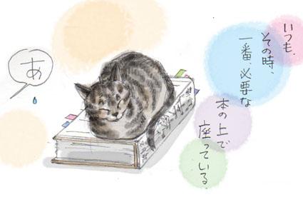 猫の兵法-其の九「集中妨害」