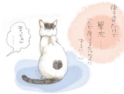 猫の兵法-其の拾壱「猫背の陣」