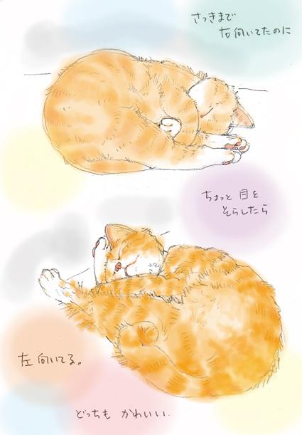 寝子ちゃん