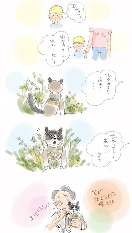 猫ですから。