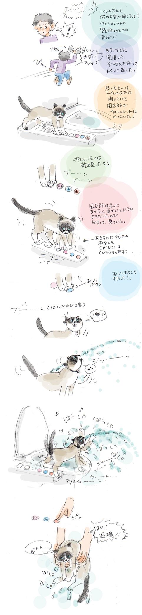 トイレの風太郎-現行犯編