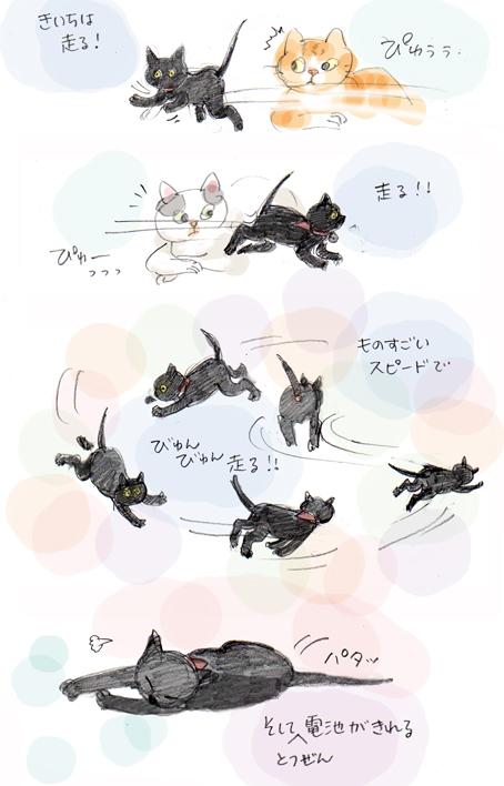 走る走る!!