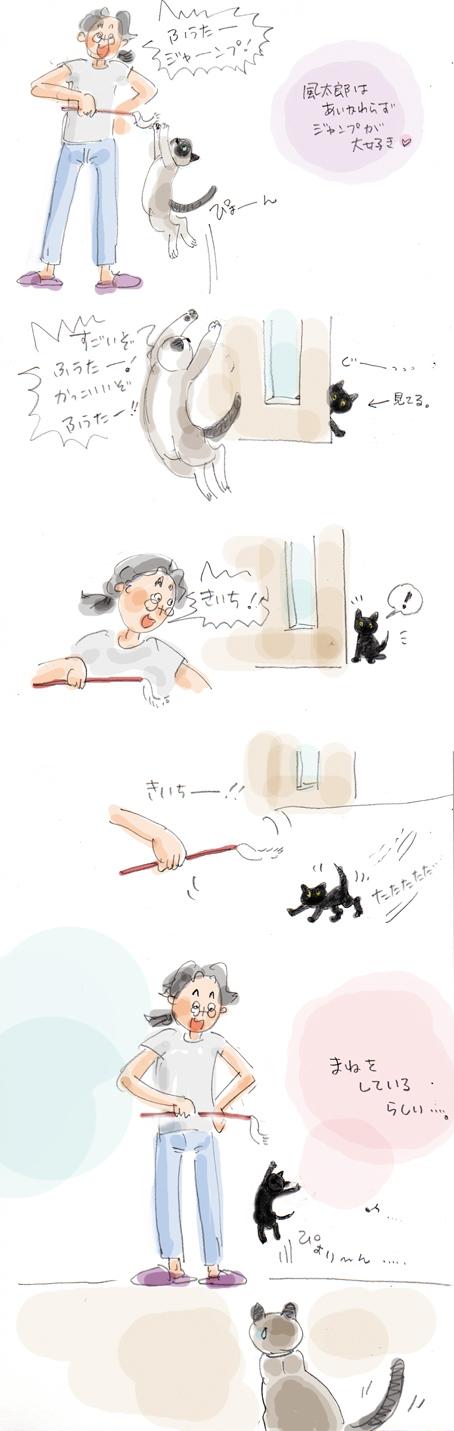 まねっこ子猫