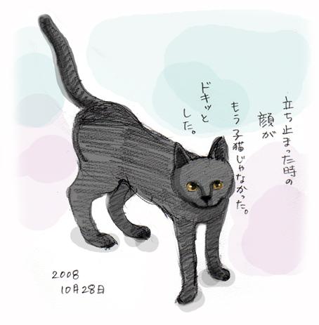 日常スケッチ(10)