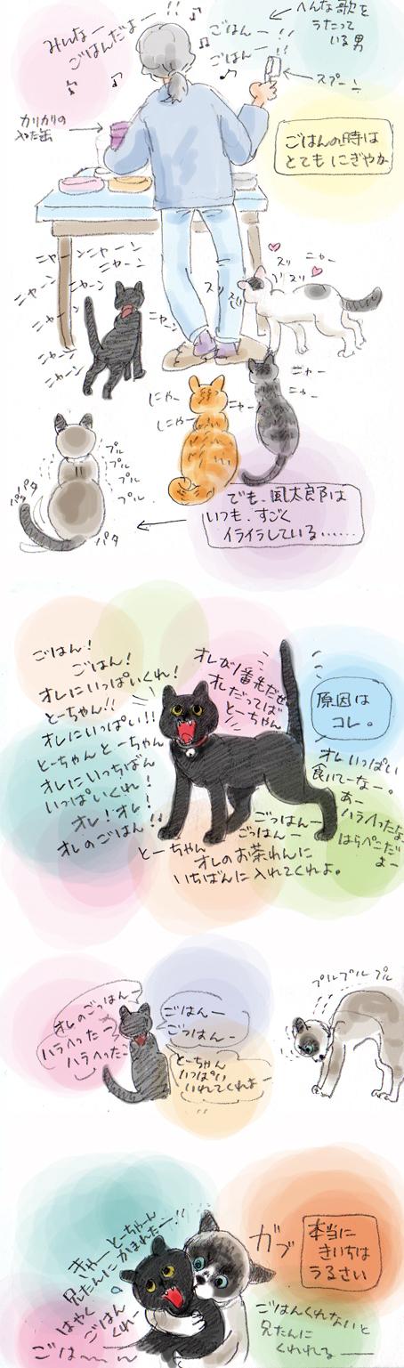 風太郎のイライラ