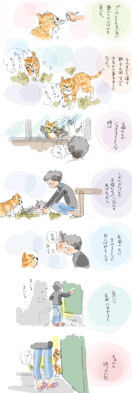 さすらいのプー (4)