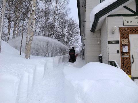 排雪な一日