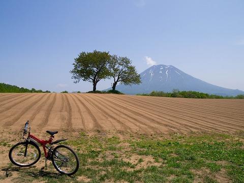 ニセコなサイクリング・前半