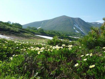久々の登山で緑岳へ