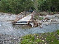 石狩川源流部盗伐調査(その1)見つけた盗伐の証拠