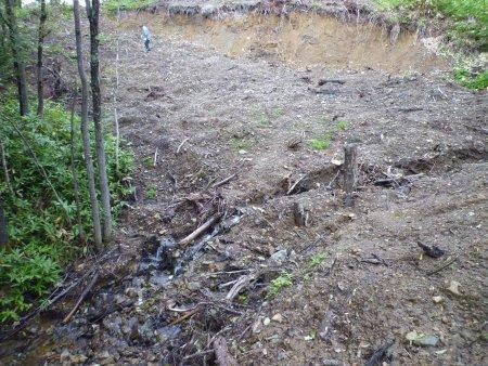 石狩川源流部盗伐調査(その2)消えた「無印良品」