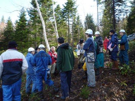 石狩川源流部違法伐採合同調査での林野庁のおかしな説明