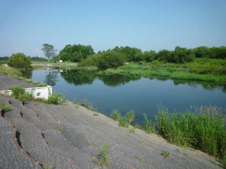 浸水公園になった親水公園