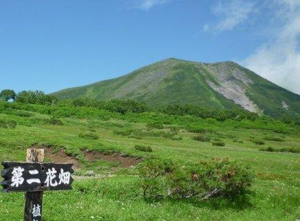 緑岳でのマツダタカネオニグモ調査
