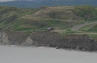 漁港と生態系