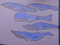 クジラナイフ その2