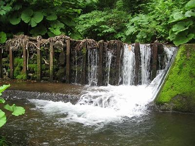 エゾ松沢川