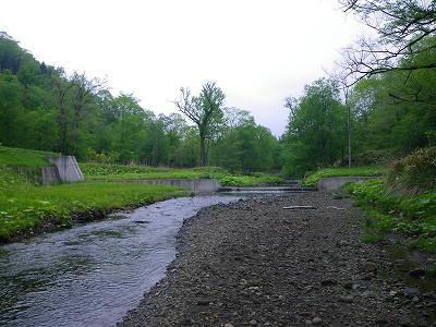 ショロマ川2