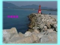 暖かくなったんで神湊漁港と波津漁港に行ってみました。