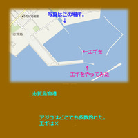 久しぶりの志賀島漁港へ