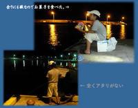 糸島市 西浦漁港にアジ子狙い