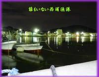 探り釣りで船越漁港と西浦漁港
