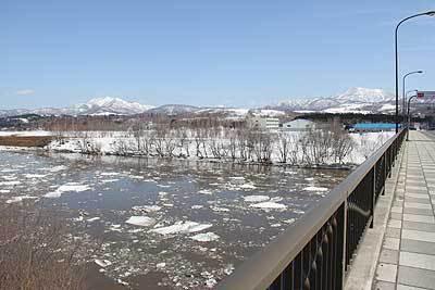 天塩川の氷が解けた