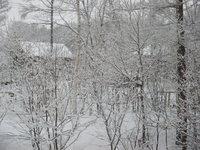 雪は降り続く