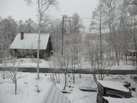 昨日は雪、今日も雪