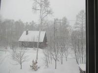 また雪が降る