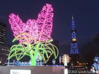 【札幌市電】ホワイトイルミネーションの季節