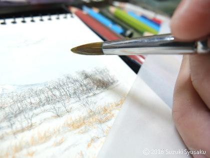 宮の森日記●イラスト作業